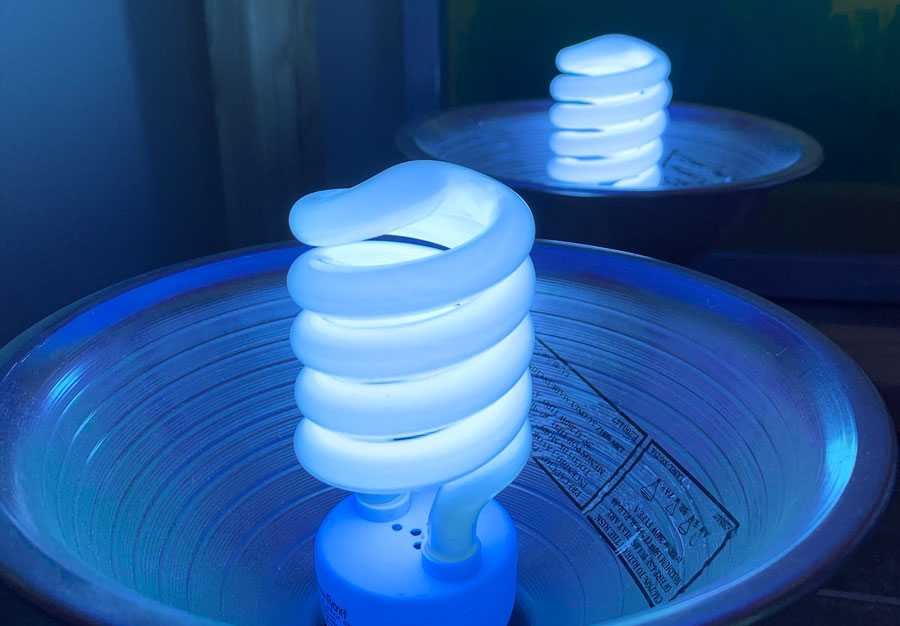 INW Trading Co.   Ultraviolet exposure bulbs