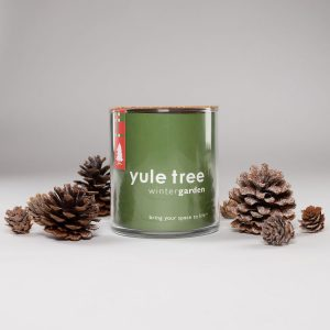 Yule Tree Christmas Garden Kit by Potting Shed Creations, Ltd. | Troy, ID