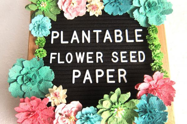 Recycled Ideas | Plantable Flower Seed Paper | Walla Walla, WA