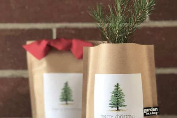 Potting Shed Creations, Ltd. Christmas Tree-in-a-Bag