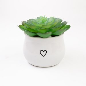 Succulent Heart Mini Planter | Navigate North | Whitefish, MT